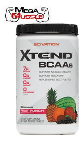Scivation Xtend Ripped BCAAs 501g